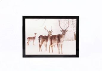 Jingles LED Lit Christmas Deer Image 40 x 30cm